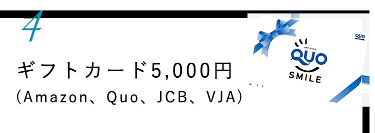4.選べるギフトカード5,000円分(アマゾン、QUO、JCB、VJA)
